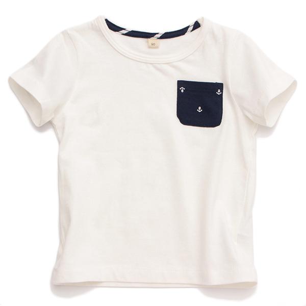 オーガニックコットン無地半袖Tシャツ 商品画像 (メイン)