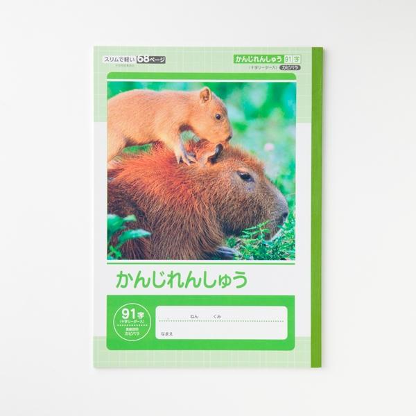 かんじれんしゅう91字十字リーダー入 商品画像 (メイン)