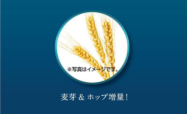 麦芽&ホップ増量!