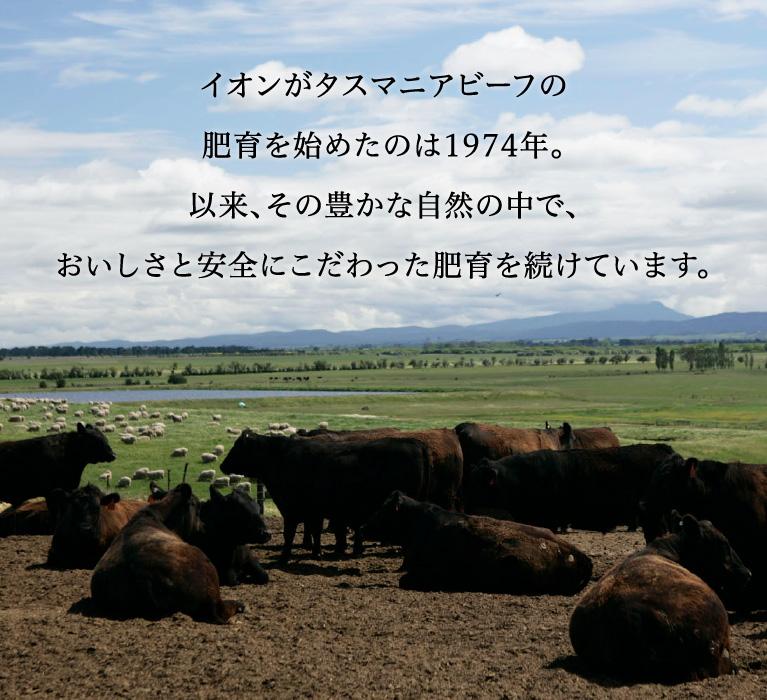 イオンがタスマニアビーフの肥育を始めたのは1974年。以来、その豊かな自然の中で、おいしさと安全にこだわった肥育を続けています。