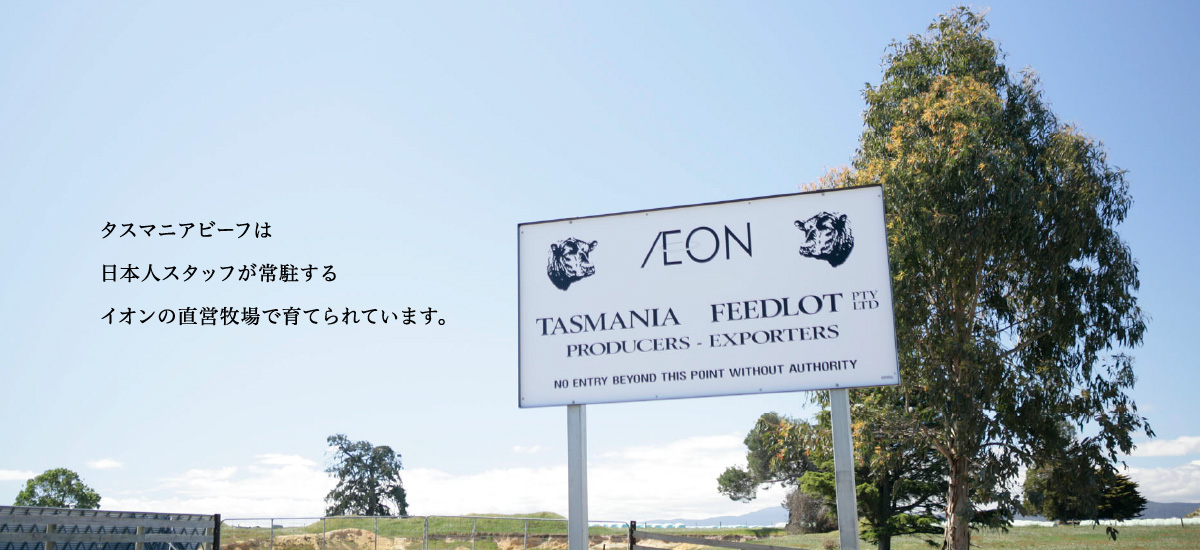 タスマニアビーフは日本人スタッフが常駐するイオンの直営牧場で育てられています。