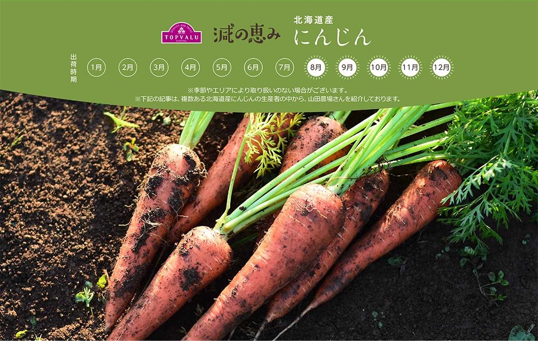 北海道産 にんじん ※季節やエリアにより取り扱いのない場合がございます。※下記の記事は、複数ある北海道産にんじんの生産者の中から、山田農場さんを紹介しております。。