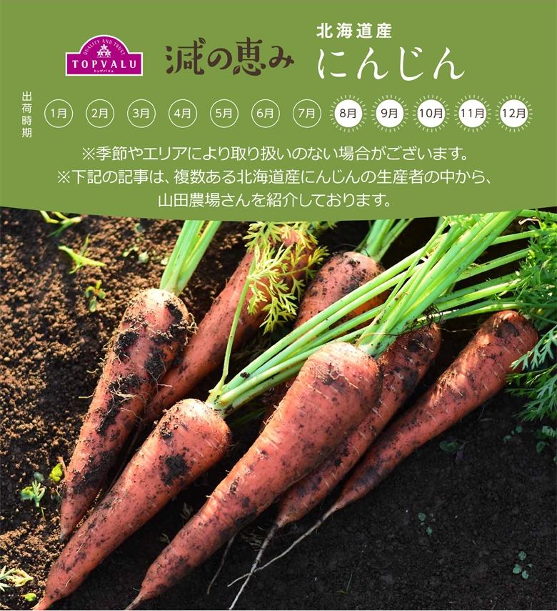 北海道産 にんじん ※季節やエリアにより取り扱いのない場合がございます。※下記の記事は、複数ある北海道産にんじんの生産者の中から、山田農場さんを紹介しております。