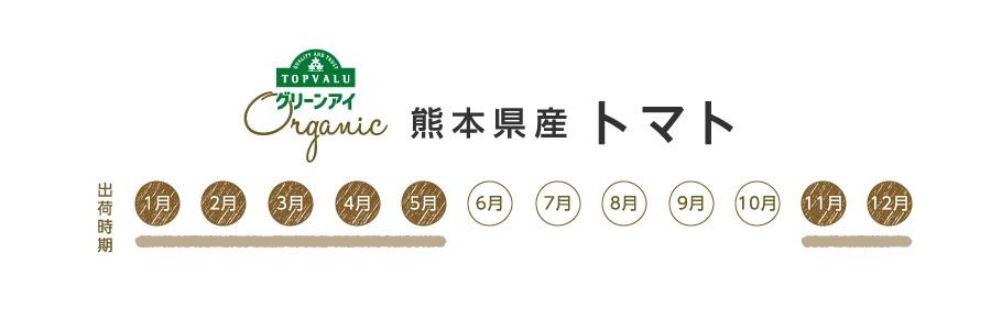 グリーンアイオーガニック 熊本県産 トマト