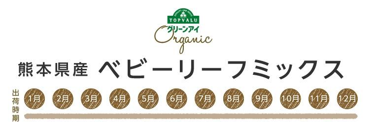 グリーンアイオーガニック 熊本県産 ベビーリーフミックス