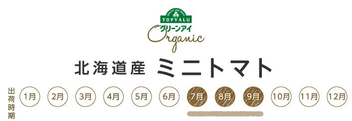 グリーンアイオーガニック 北海道産 ミニトマト