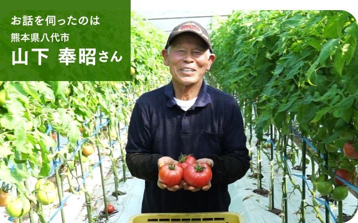 お話を伺ったのは 熊本県八代市 山下 奉昭さん