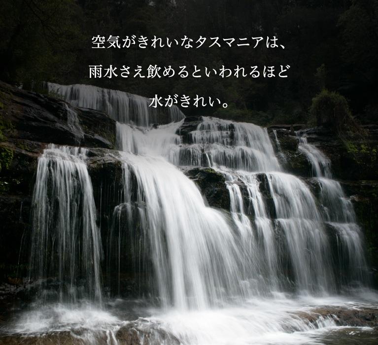 空気がきれいなタスマニアは、雨水さえ飲めるといわれるほど水がきれい。