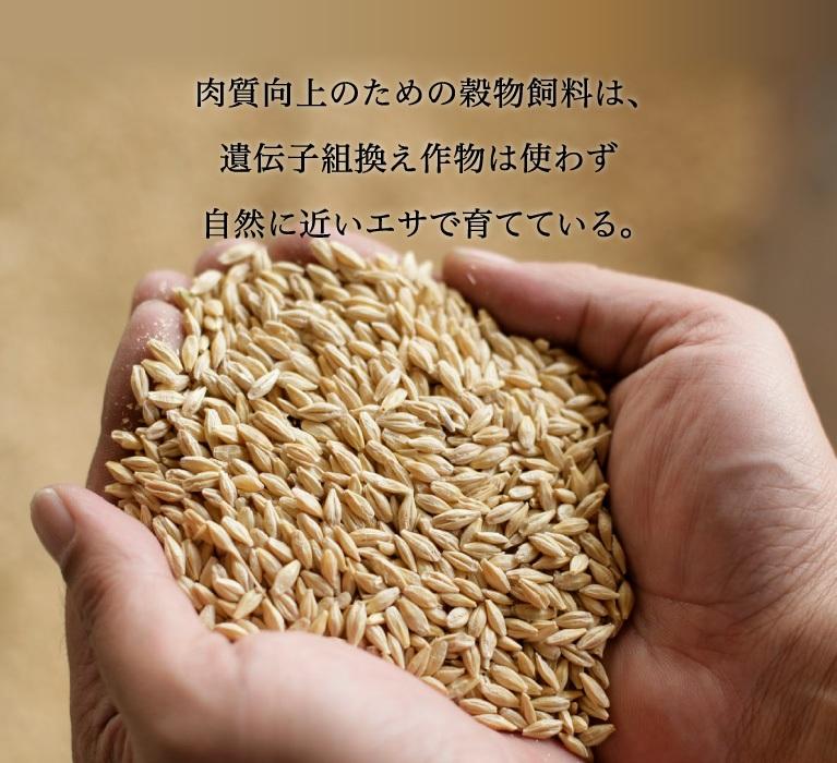 肉質向上のための穀物飼料は、遺伝子組換え作物は使わず自然に近いエサで育てている。