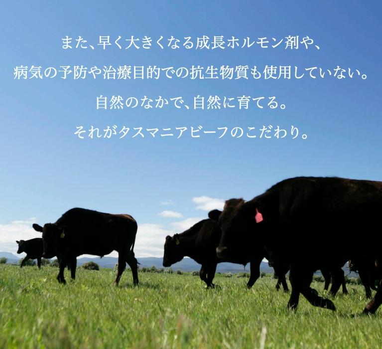 また、早く大きくなる成長ホルモン剤や、病気の予防や治療目的での抗生物質も使用していない。自然のなかで、自然に育てる。それがタスマニアビーフのこだわり。