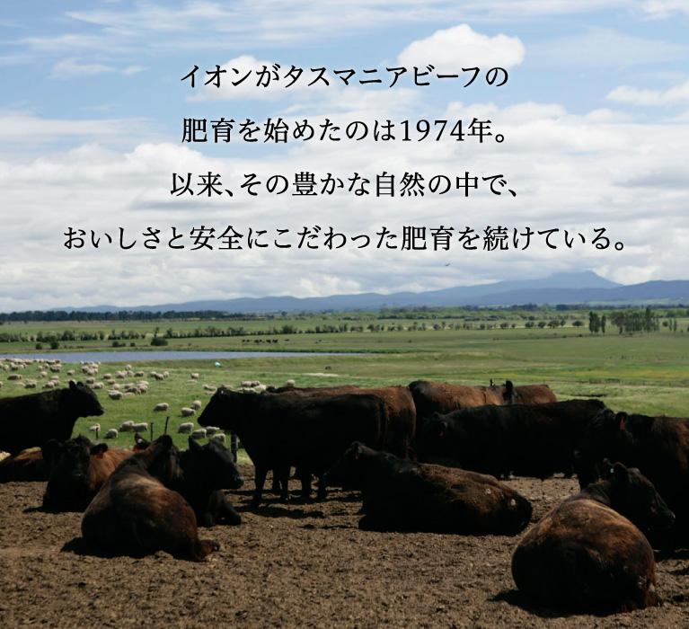 イオンがタスマニアビーフの肥育を始めたのは1974年。以来、その豊かな自然の中で、おいしさと安全にこだわった肥育を続けている。