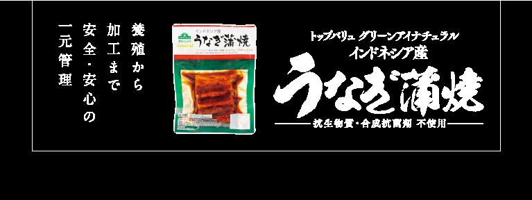うなぎ蒲焼