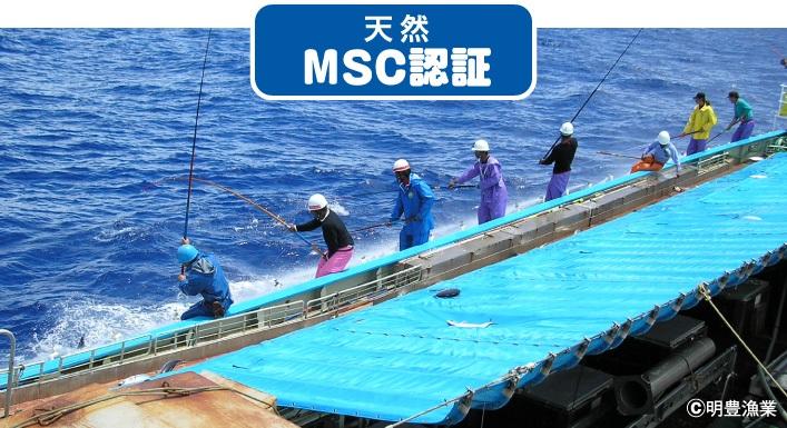 天然 MSC認証 ©明豊漁場