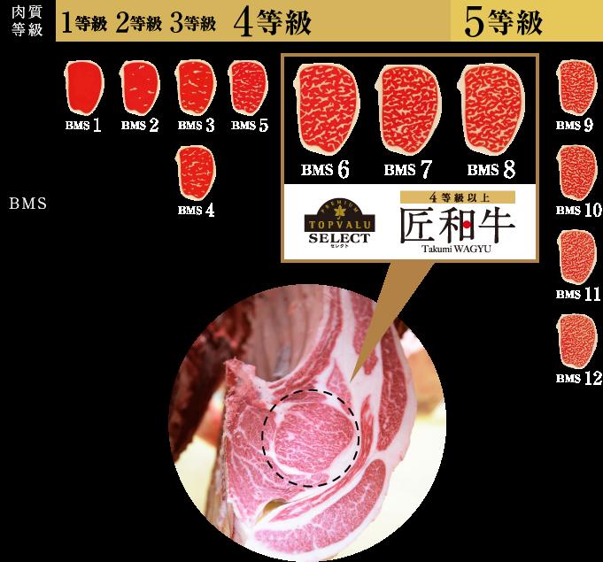 肉質等級 BMS トップバリュ セレクト 4等級以上 匠和牛