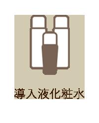 導入液化粧水