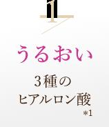 1/うるおい 3種のヒアルロン酸*1