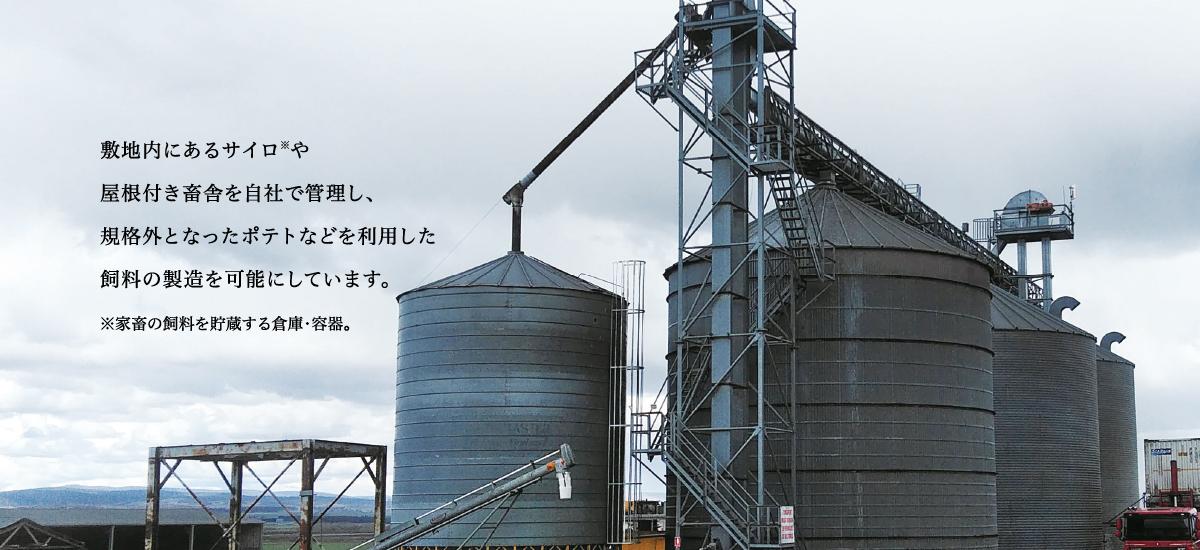 敷地内にあるサイロ※や屋根付き畜舎を自社で管理し、規格外となったポテトなどを利用した飼料の製造を可能にしています。※家畜の飼料を貯蔵する倉庫・容器。