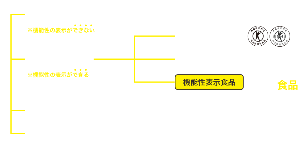 機能性表示の図