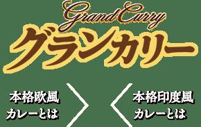 Grand Curry 本格欧風カレーとは 本格印度風カレーとは