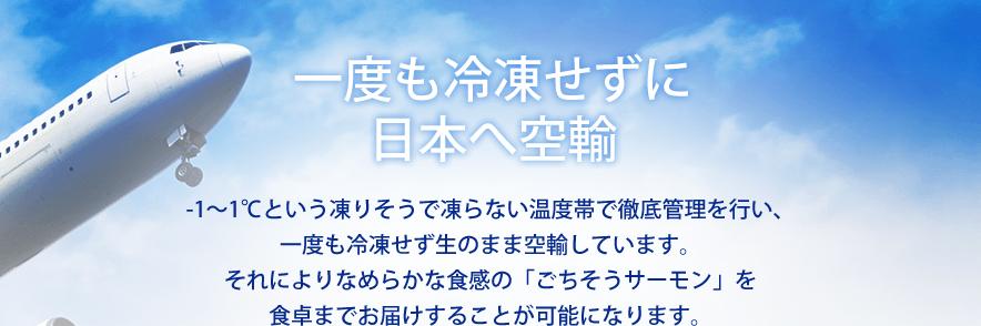 一度も冷凍せずに日本へ空輸 -1~1℃という凍りそうで凍らない温度帯で徹底管理を行い、一度も冷凍せず生のまま空輸しています。それによりなめらかな食感の「ごちそうサーモン」を食卓までお届けすることが可能になります。