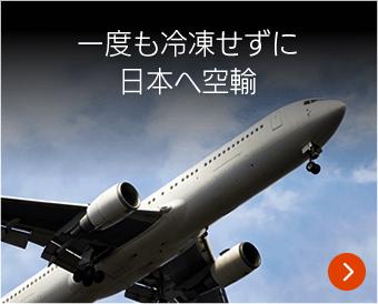 一度も冷凍せずに日本へ空輸