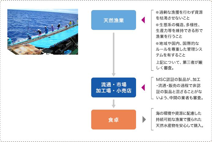 MSC認証の仕組み